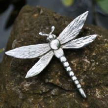 Dragonfly brooch B107